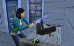 TS4 Woodworking