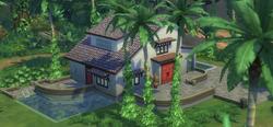 Belomisia Jungle Rental