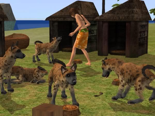 File:Hyena.jpg