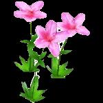 File:Wildflower Azalea.png