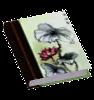File:Book General China2.png