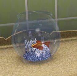 Hansel fish