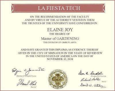 Elaine Joy Diploma