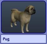 Pug (Sims 2)