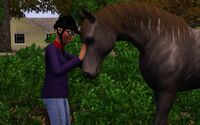 Eliza and a horse