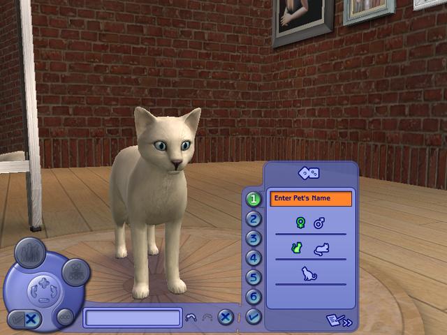 File:Create A Cat.png