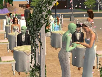 File:Elizabeth and Venus' Wedding.jpg