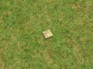 Journal au sol (Les Sims 2)