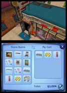 TS3 nintendo 3ds screen 04