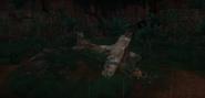 Selvadorada plane