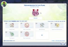 Neighborhood Action Plans