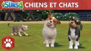 Les Sims 4 Chiens et Chats bande-annonce officielle de sortie