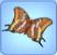 Papillon pacha à deux queues