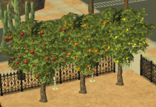 Pommier Oranger Citronnier Sims 2
