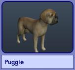 Puggle (Sims 2)