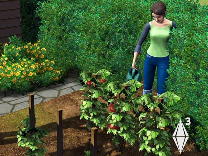 Gardening (The Sims 3) | The Sims Wiki | FANDOM powered by Wikia