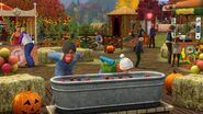 TS3 seasons fall festival