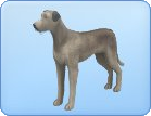 File:Breed-l46.png