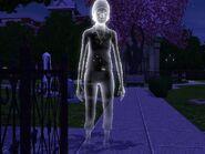 Petunia Clover (fantôme)