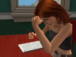 TS2 Sim doing homework