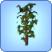 Omniplanta1
