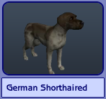 German Shorthaired (Sims 2)
