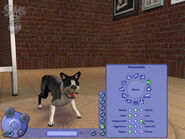 The Sims 2 Pets Screenshot 08