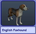 English Foxhound (Sims 2)