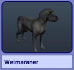 Weimaraner (Sims 2)