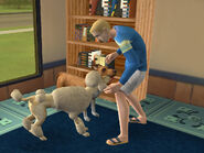 The Sims 2 Pets Console Screenshot 02