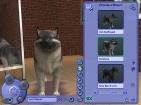Créer un Animal (Les Sims 2)