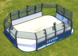 Deluxe Ice Rink