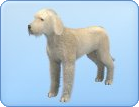 File:Breed-l50.png