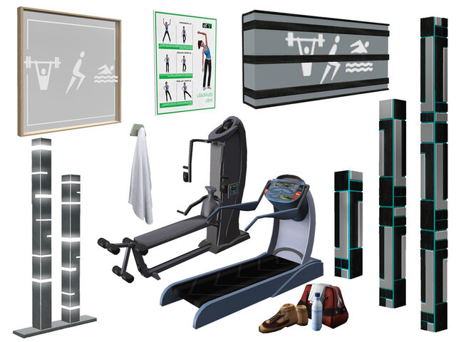 File:TS3 TLS Gym objects.jpg