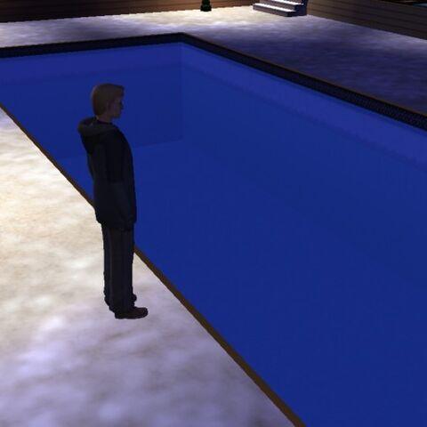 <i>Eu ainda estava olhando todo o trabalho que os zumbis haviam feito: uma grande piscina.</i>