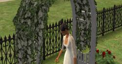 SimSérie - Casamento7