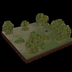 Parque do Bosque