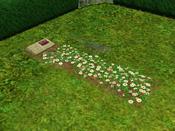 Túmulo de Lolita Caixão