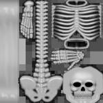 Esqueleto incomum