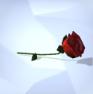 Rosa (TS4)