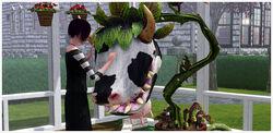 Thumbnail 688x336 ADD3