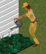 Jardineiro (TS)