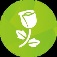 Ícone The Sims 4 Jardim Romântico (Primeira Versão)