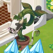 Planta-Vaca em The Sims Social