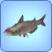 Peixe-Gato Siamês