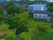 Residência BFF e Árvore Sylvana