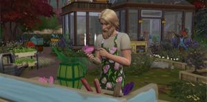 Carreira Jardineiro - Designer Floral