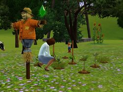 Jardinagem (The Sims 3)