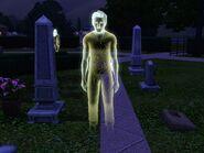 Grady Elfman (Riverview) fantasma