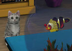 The Sims 3 Pets 07
